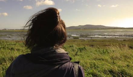 vue horizon nature
