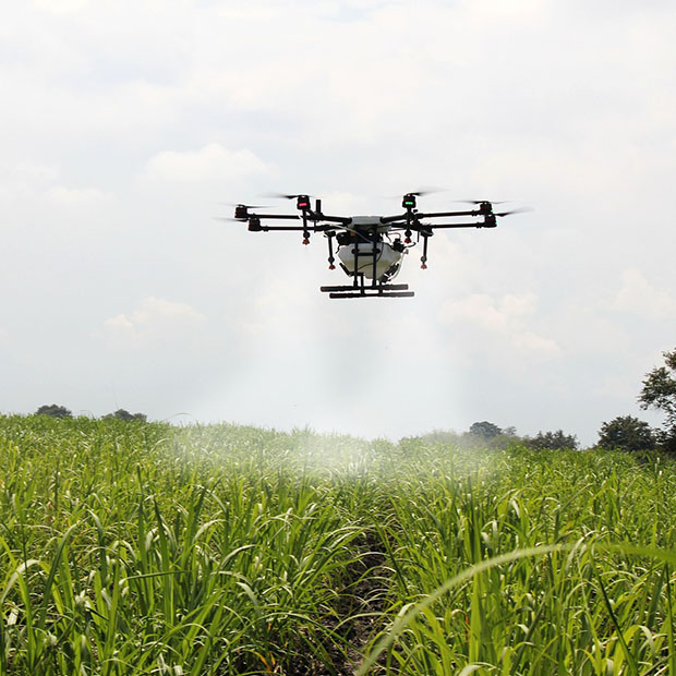 Les drones facilitent l'agriculture de précision
