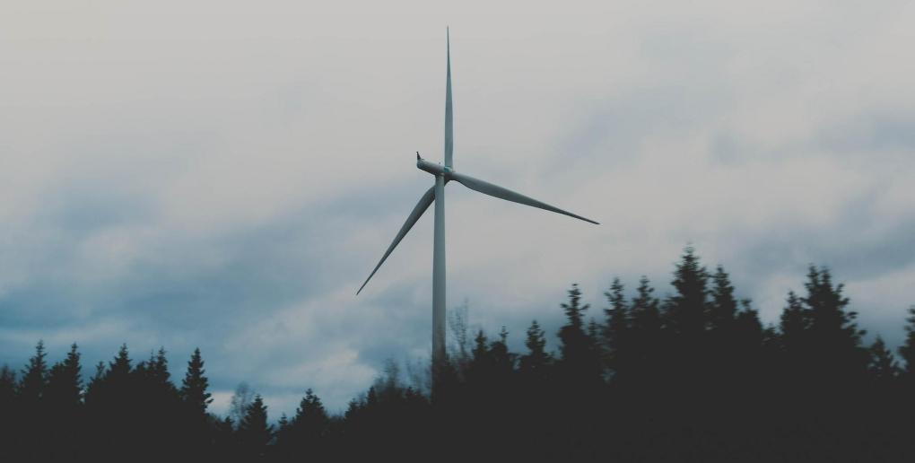 Une éolienne derrières des arbres