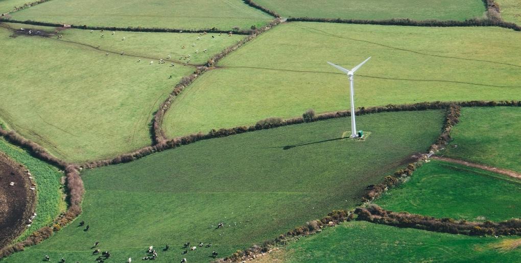 Une éolienne entourée de champs
