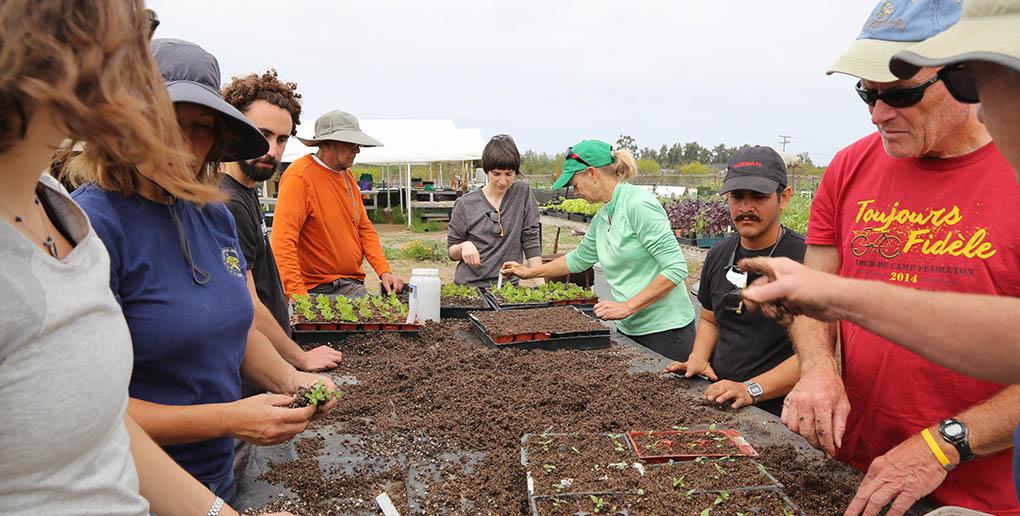 L'association AgroVeloCity participe à des cours dans une ferme