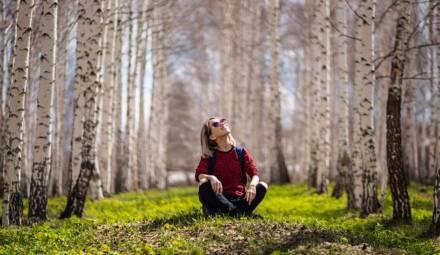 EcoTree est une start-up qui favorise l'achat d'arbres