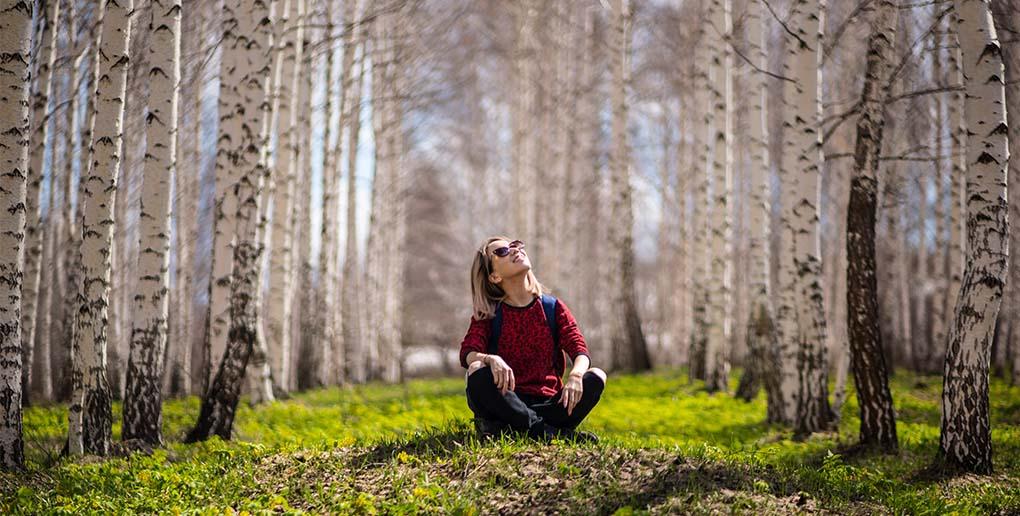 jeune femme assise au milieu de plusieurs arbres