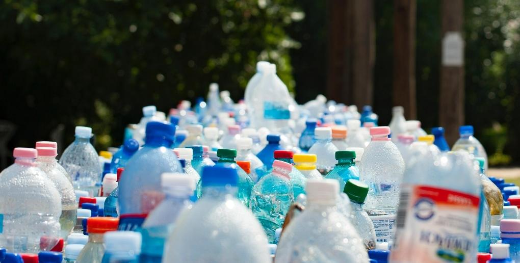 Des bouteilles en plastique collectées