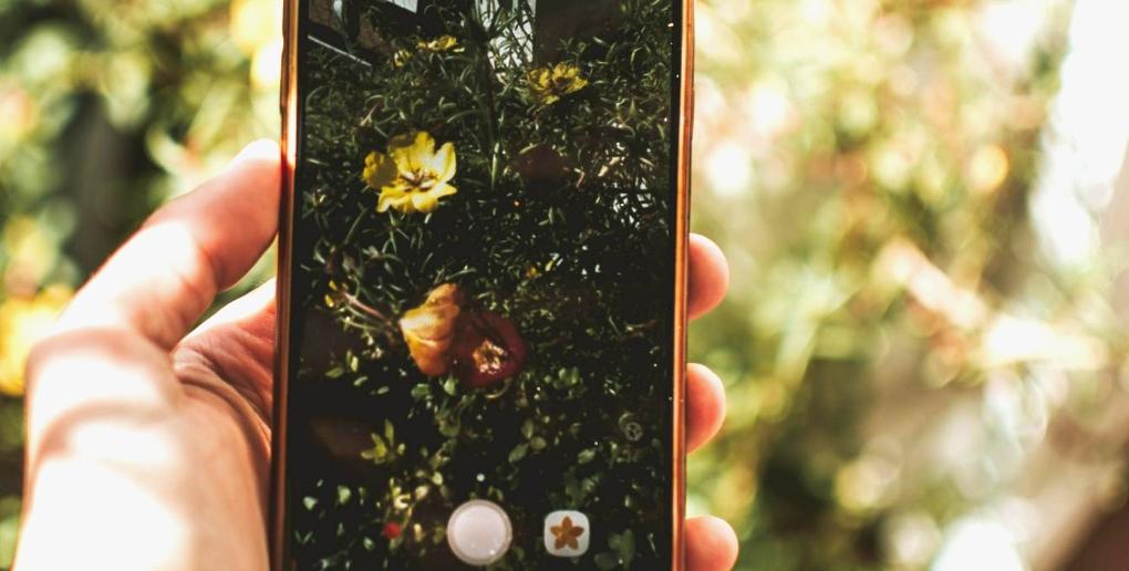 connected garden est une application mobile