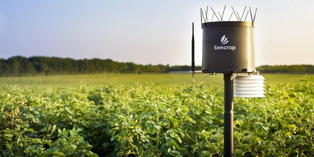 station météo connectée Sencrop