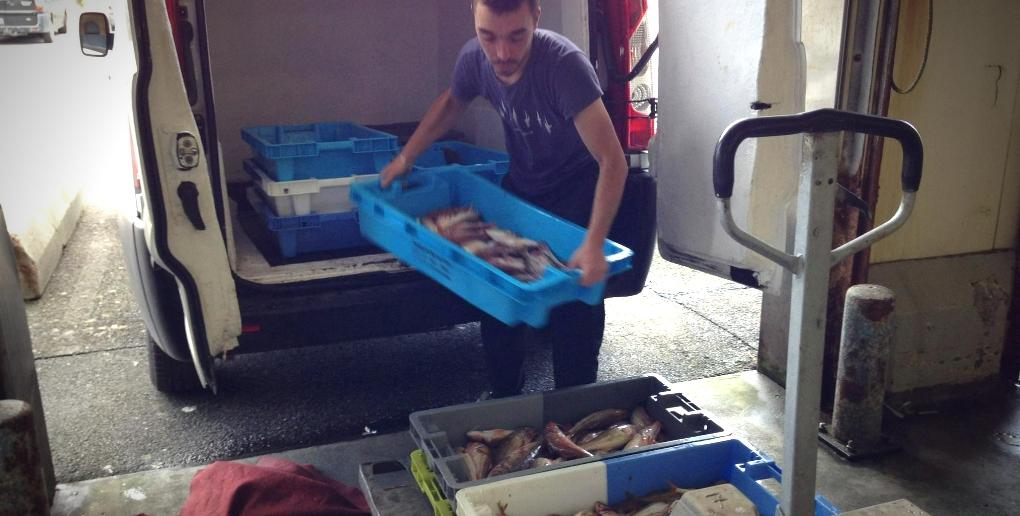 un pêcheur transporte ses marchandises dans des bacs en plastique