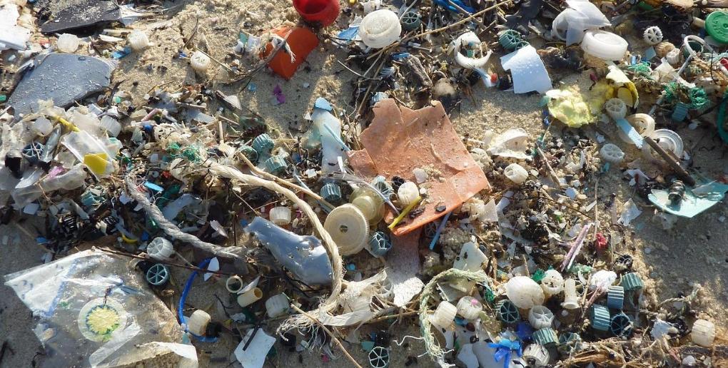 exemple de pollution plastique sur une plage