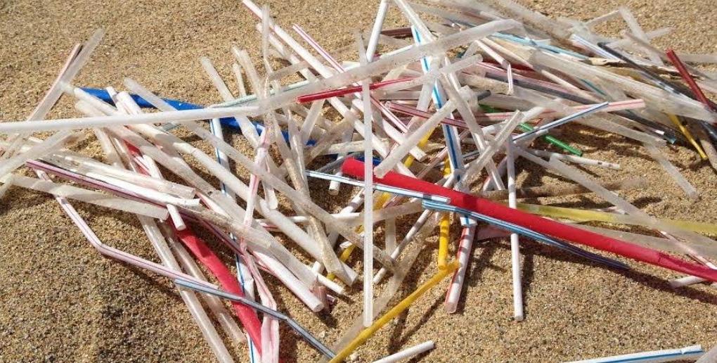 des pailles en plastique retrouvées sur une plage
