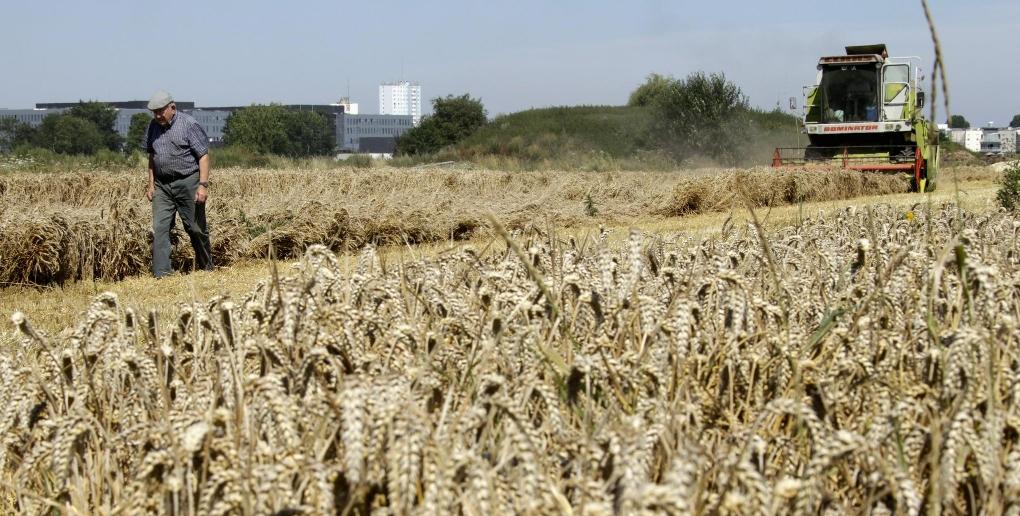 agriculteur céréalier