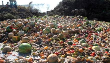 gaspillage alimentaire