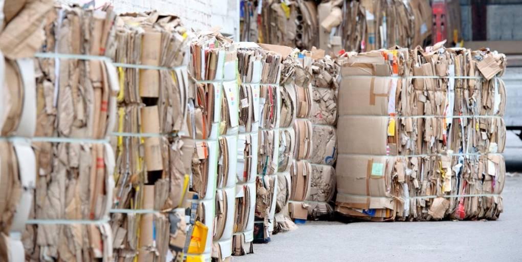 carton recyclé