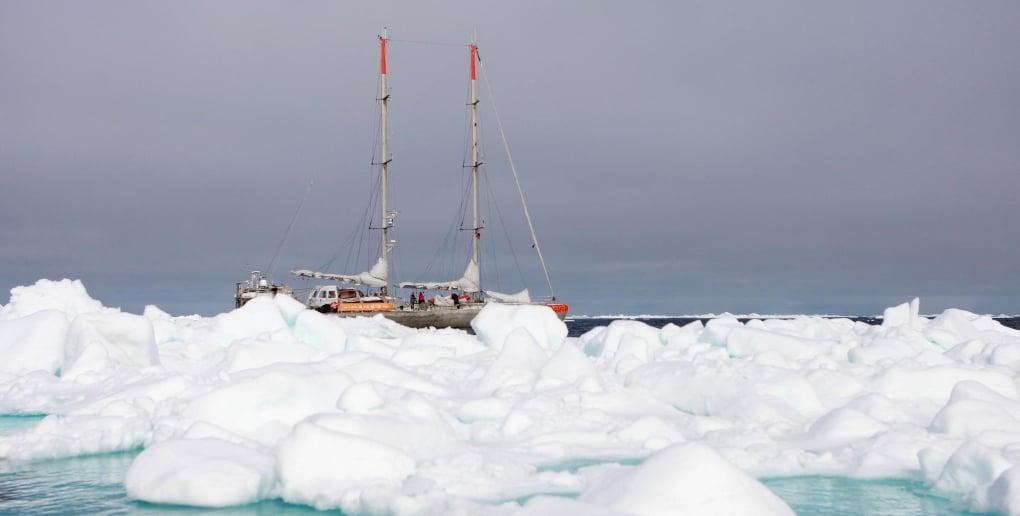 Tara Oceans est un projet scientifique