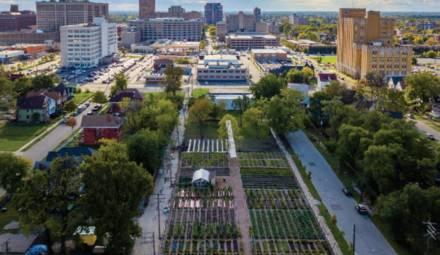 detroit jardins partagés