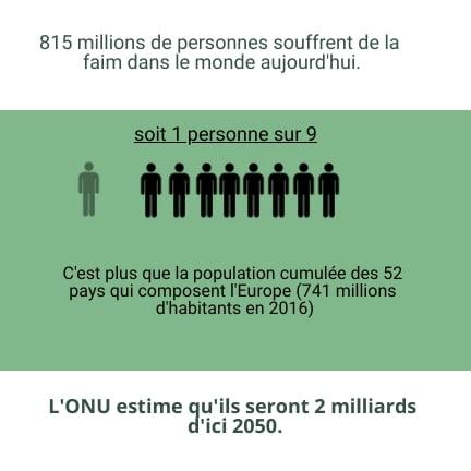 chiffres malnutrition monde source ONU