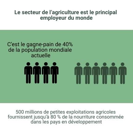 chiffres agriculture mondiale