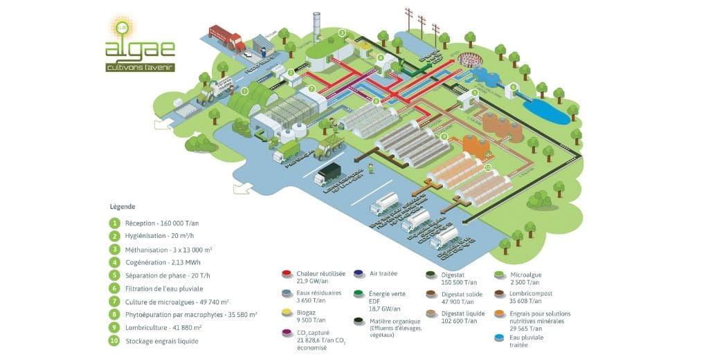 site production societe algae