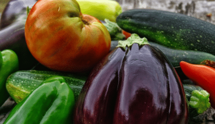 Légumes potager urbain