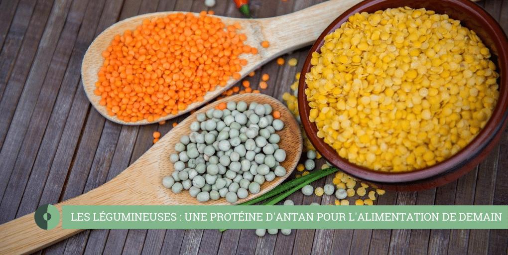 les protéines végétales enjeux démographique et environnemental