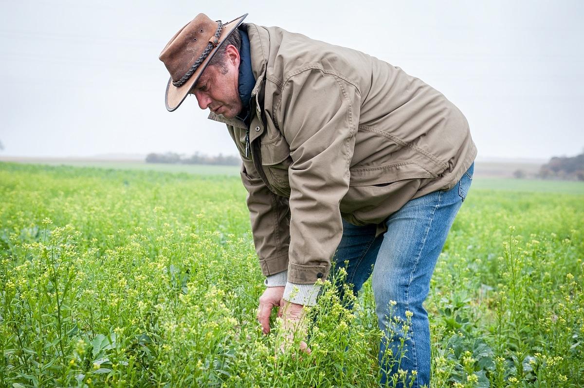 agriculteur