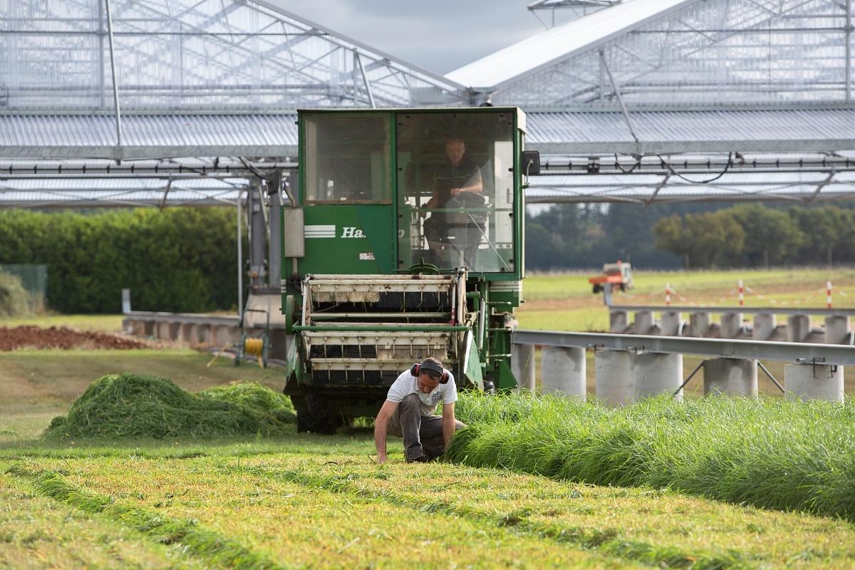 Siclex abri mobile et récolte prairie