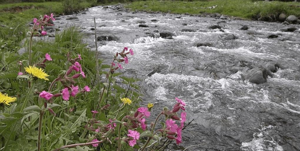 eau riviere