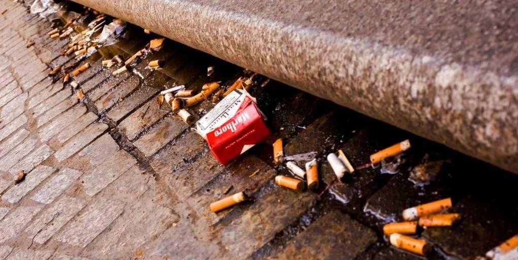 des mégots de cigarettes sur la voie publique