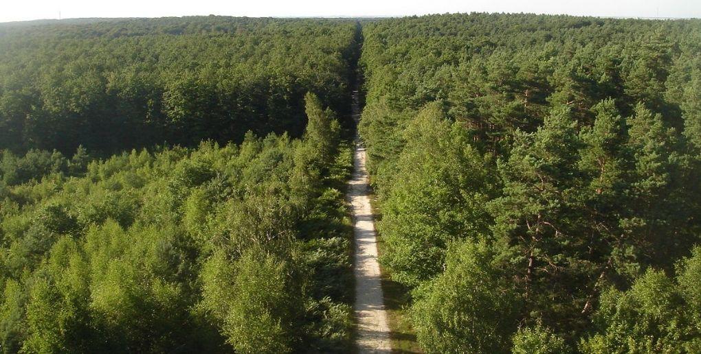 forêt domaniale france